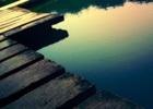 【微言】万物有灵:因为守望,生生不息