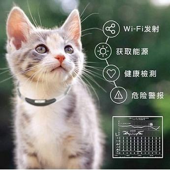 【奇葩】带猫粮出门就能换流量?你信吗!